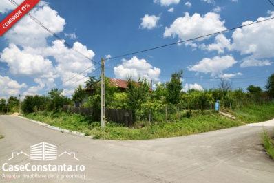 casa-chirnogeni-strada-asfalata-pret-minim1