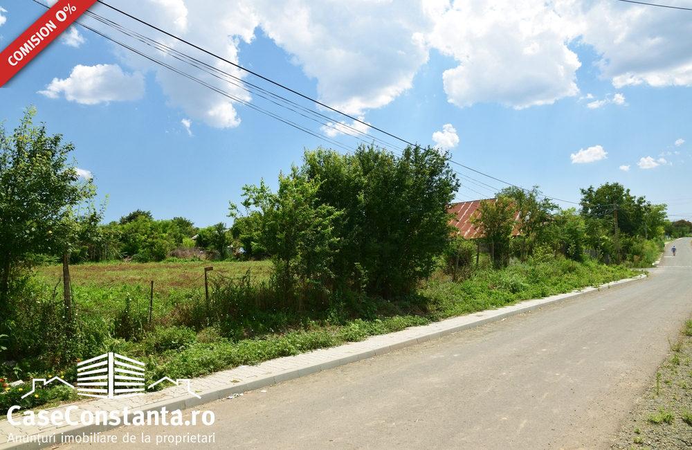 casa-chirnogeni-strada-asfalata-pret-minim3