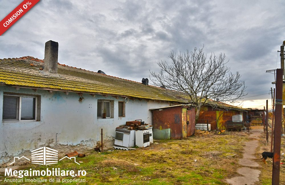ferma-zootehnica-de-vanzare-potarnichea14
