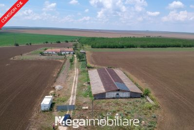 vand-ferma-lanurile-comuna-baraganu21