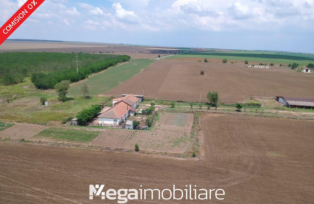 vand-ferma-lanurile-comuna-baraganu23